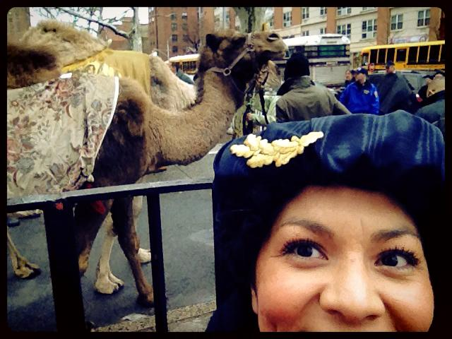 aurora with camel