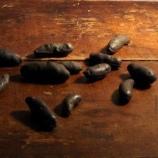 cast iron potatoes