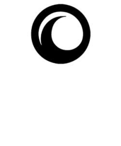 Black Ocean logo