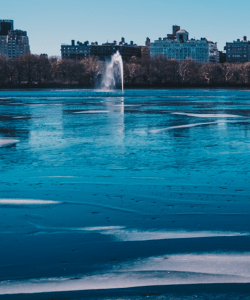 A view of the Jacqueline Kennedy Onassis Reservoir in Central Park in New York City. The water is covered in a thin layer of fresh ice. A fountain spouts in the background.