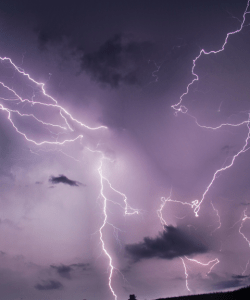 Several bands of lightning crackle above a field; the sky and clouds glow purple.