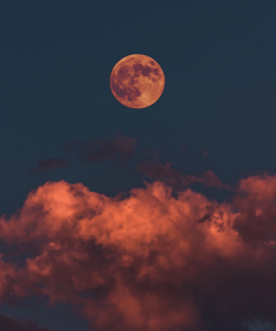 The moon at sunset