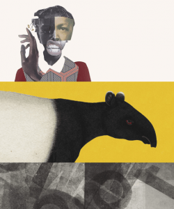 A collage of art from three book covers: At the top, the face of Black child is constructed out of multiple photos; in the middle, an illustrated Malayan tapir appears against a yellow background; the bottom features black-and-white abstract patterns.