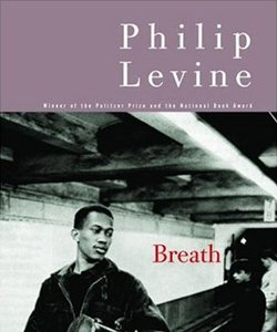 Levine_Breathe_Cover.jpg