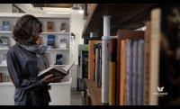 Milkweed Editions: 35 Years of Transformative Literature