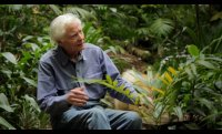 W.S. Merwin: Even Though the Whole World Is Burning