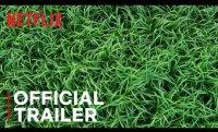 In the Tall Grass | Official Trailer | Netflix
