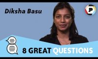 Diksha Basu (author of The Windfall)  | 8 Great Questions