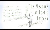 The pleasure of poetic pattern - David Silverstein