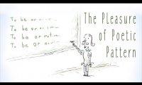 The pleasure of poetic pattern - David Silverstein