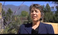 Meet Natalie Goldberg