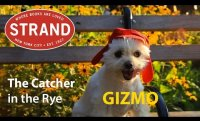Gizmo's Book Club | Catcher in the Rye