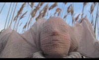 The Transformation | Poem by Emily Jungmin Yoon | Film by Malin Sandberg